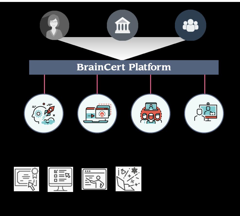Braincert Platform