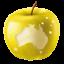 Australian Teachers
